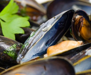 Cooked Mussels in White Wine Sauce